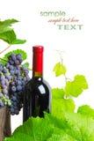 κόκκινο κρασί σταφυλιών μ&pi στοκ φωτογραφίες με δικαίωμα ελεύθερης χρήσης