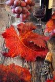 Κόκκινο κρασί, σταφύλια, φύλλα φθινοπώρου και εκλεκτής ποιότητας πώμα μπουκαλιών Στοκ Εικόνες