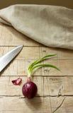 κόκκινο κρεμμυδιών μαχαιριών τροφίμων ανασκόπησης Στοκ φωτογραφία με δικαίωμα ελεύθερης χρήσης