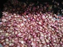 Κόκκινο κρεμμύδι που φαίνεται υγιές και ασφαλές για την κατανάλωση στοκ εικόνες