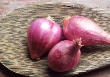 Κόκκινο κρεμμύδι στο κουτάλι Στοκ Εικόνες