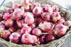 Κόκκινο κρεμμύδι Στοκ φωτογραφία με δικαίωμα ελεύθερης χρήσης
