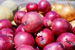 Κόκκινο κρεμμύδι Στοκ φωτογραφίες με δικαίωμα ελεύθερης χρήσης
