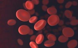 κόκκινο κυττάρων αίματος Στοκ Εικόνα