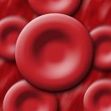 κόκκινο κυττάρων αίματος Στοκ εικόνες με δικαίωμα ελεύθερης χρήσης