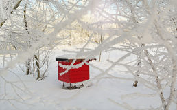 κόκκινο κυψελών στοκ εικόνα με δικαίωμα ελεύθερης χρήσης