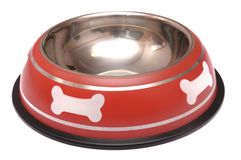 Κόκκινο κύπελλο σίτισης κατοικίδιων ζώων με το λάστιχο τριβής στοκ φωτογραφία με δικαίωμα ελεύθερης χρήσης