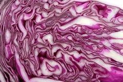 Κόκκινο λάχανο Στοκ εικόνες με δικαίωμα ελεύθερης χρήσης