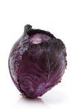 κόκκινο λάχανων Στοκ Εικόνες