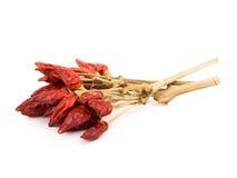 κόκκινο λευκό πιπεριών ανασκόπησης καυτό Στοκ φωτογραφία με δικαίωμα ελεύθερης χρήσης