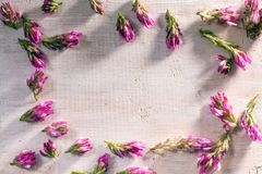 Κόκκινο λουλούδι πλαισίων στο ξύλο Στοκ φωτογραφία με δικαίωμα ελεύθερης χρήσης