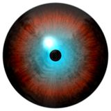 Κόκκινο μάτι με τον μπλε κύκλο, μαύρος μαθητής, άσπρο υπόβαθρο, ζωικός/ανθρώπινος βολβός του ματιού, σύσταση απεικόνιση αποθεμάτων