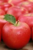 Κόκκινο μήλο με ένα φύλλο στοκ εικόνες