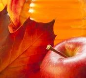 Κόκκινο μήλο, χρυσό μέλι, φύλλο φθινοπώρου. Στοκ φωτογραφία με δικαίωμα ελεύθερης χρήσης