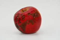 Κόκκινο μήλο με το παράσιτο Στοκ εικόνα με δικαίωμα ελεύθερης χρήσης