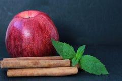 Κόκκινο μήλο, ραβδιά κανέλας και φύλλα μεντών Στοκ Εικόνες