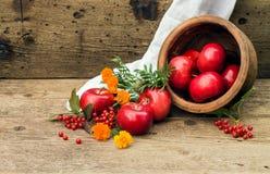 Κόκκινο μήλο σε ένα δοχείο αργίλου με το viburnum και marigolds Στοκ φωτογραφίες με δικαίωμα ελεύθερης χρήσης
