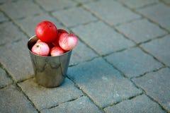 Κόκκινο μήλο στον κάδο Στοκ Φωτογραφία
