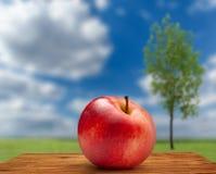 Κόκκινο μήλο στο υπόβαθρο ουρανού και δέντρων Στοκ Εικόνες