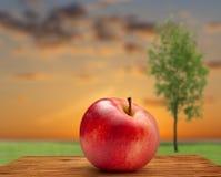 Κόκκινο μήλο στο υπόβαθρο ουρανού και δέντρων Στοκ φωτογραφία με δικαίωμα ελεύθερης χρήσης