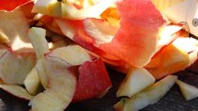 Κόκκινο μήλο Στοκ Εικόνες