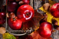 Κόκκινο μήλο Στοκ εικόνα με δικαίωμα ελεύθερης χρήσης