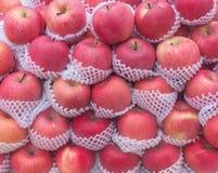κόκκινο μήλο fuji Στοκ Εικόνα