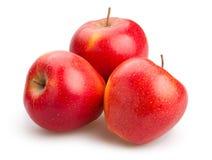 κόκκινο μήλων Στοκ εικόνες με δικαίωμα ελεύθερης χρήσης