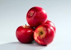 κόκκινο μήλων Στοκ φωτογραφίες με δικαίωμα ελεύθερης χρήσης