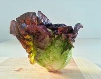 Κόκκινο μαρούλι στον πίνακα, λαχανικά, συστατικό τροφίμων Στοκ φωτογραφία με δικαίωμα ελεύθερης χρήσης