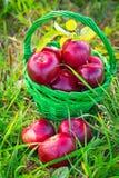 κόκκινο μαχαιριών υφασμάτων καλαθιών μήλων έπειτα σε δύο Στοκ Εικόνες
