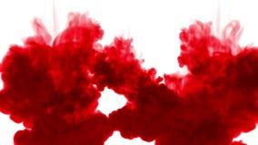 Κόκκινο μελάνι στο νερό στο άσπρο υπόβαθρο τρισδιάστατο μελάνι ζωτικότητας με τη μεταλλίνη luma ως άλφα κανάλι για τα αποτελέσματ ελεύθερη απεικόνιση δικαιώματος