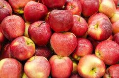 κόκκινο μερών μήλων Στοκ Εικόνα