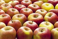 κόκκινο μερών μήλων Στοκ εικόνες με δικαίωμα ελεύθερης χρήσης