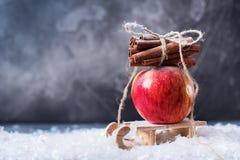 Κόκκινο μικρό έλκηθρο κανέλας κλάδων της Apple Στοκ Φωτογραφία