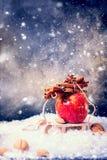 Κόκκινο μικρό έλκηθρο κανέλας κλάδων της Apple Στοκ Φωτογραφίες