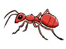 Κόκκινο μυρμήγκι από το δάσος Στοκ φωτογραφία με δικαίωμα ελεύθερης χρήσης