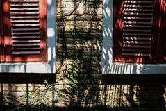 κόκκινο ξύλινο louver παράθυρο κοντά στο τουβλότοιχο που καλύπτει με το μεξικάνικο dai στοκ εικόνες
