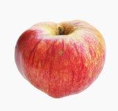 Κόκκινο οικολογικό μήλο Στοκ εικόνες με δικαίωμα ελεύθερης χρήσης