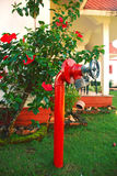 Κόκκινο λουλούδι και κόκκινη βρύση στοκ εικόνα με δικαίωμα ελεύθερης χρήσης