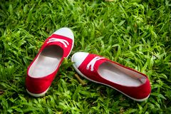 Κόκκινο πάνινο παπούτσι στην πράσινη χλόη Στοκ φωτογραφίες με δικαίωμα ελεύθερης χρήσης