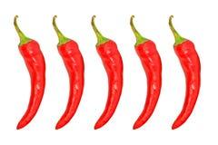 Κόκκινο πέντε - καυτό πιπέρι της Χιλής απομονωμένος Στοκ Εικόνες