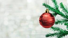 Κόκκινο παιχνίδι σφαιρών Διακόσμηση σε ένα χριστουγεννιάτικο δέντρο Στοκ εικόνες με δικαίωμα ελεύθερης χρήσης