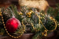 Κόκκινο παιχνίδι Χριστουγέννων μεταξύ των κομψών κλάδων και των χρυσών φω'των Η διάθεση της περιόδου Χριστουγέννων και διακοπών Στοκ φωτογραφία με δικαίωμα ελεύθερης χρήσης