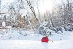 Κόκκινο παιχνίδι Χριστουγέννων στο χιόνι στα πλαίσια του wint Στοκ Φωτογραφίες