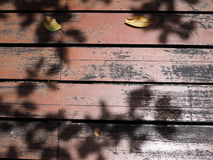 Κόκκινο παλαιό λεκιασμένο ξύλινο πάτωμα κεραμιδιών πινάκων, σκιά φύλλων Στοκ Φωτογραφία