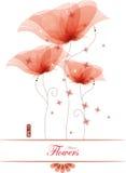 κόκκινο παπαρουνών απεικόνιση αποθεμάτων
