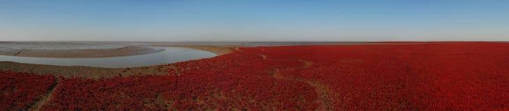 κόκκινο παραλιών Στοκ Εικόνα