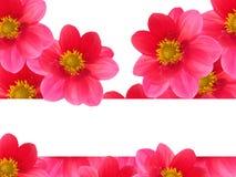 κόκκινο πετάλων λουλο&upsil Στοκ φωτογραφία με δικαίωμα ελεύθερης χρήσης
