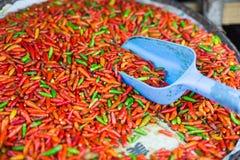 Κόκκινο πιπέρι για την πώληση Στοκ εικόνες με δικαίωμα ελεύθερης χρήσης